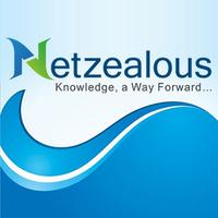 netzealous-logo