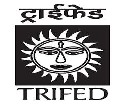 trifed-logo