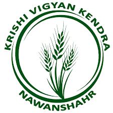 KVK Recruitment 2020: Subject Matter Specialist Posts Vacancies @kvk.icar.gov.in