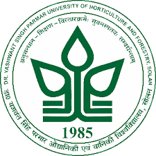 YSP University Recruitment 2020: JRF & Young Professional Posts Walkin On 17 Nov 2020