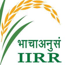 iirr-logo
