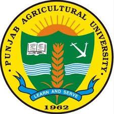 PAU Recruitment 2020: Patwari/ Computer Operator Posts Vacancies @pau.edu