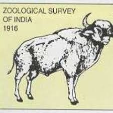 ZSI Kolkata Admission 2020: PG Diploma in Integrative Animal Taxonomy Eligibility