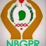 nbgpr-logo