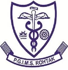 PGIMS Rohtak Recruitment 2020: Scientist & Lab Technician Posts Vacancies -19 Nov 2020