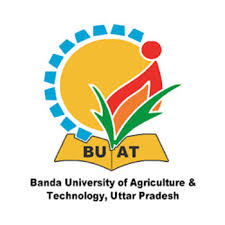 BUAT Banda Recruitment 2021: Faculty Posts Vacancies -02 Mar 2021